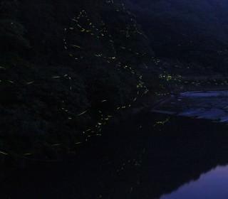 2016_渋木ホタル橋