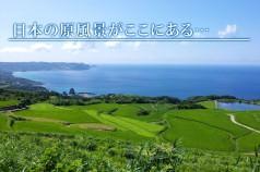 higasiusurobata_title
