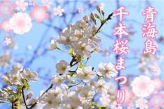 青海島千本桜まつり