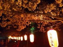 大寧寺ライトアップ